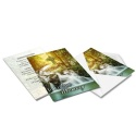 Catholic Celtic Irish Memory  Remembrance Memorial Card In Memoriam Card Catholic Memorial Cards